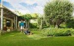 Idealne koszenie trawnika